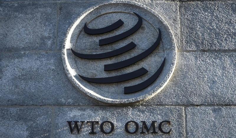 Tổng giám đốc WTO thông báo kế hoạch từ chức sớm 1 năm - ảnh 2