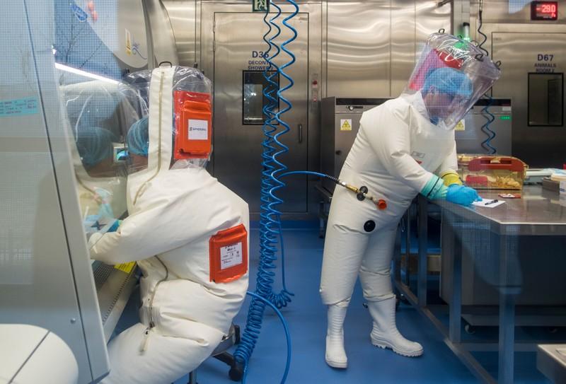 Phòng thí nghiệm Vũ Hán có 3 mẫu virus Corona bắt đầu từ dơi - ảnh 1