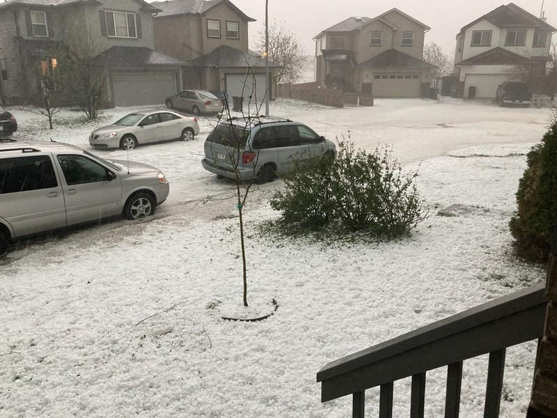 Ảnh: Mưa đá to bằng bóng tennis, nước ngập quá ô tô ở Canada - ảnh 3