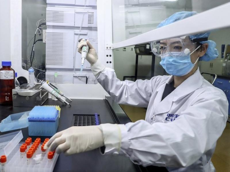 Giám đốc điều hành TQ thử nghiệm trước vaccine COVID-19 - ảnh 1
