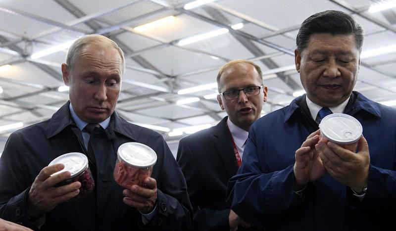 Liệu Nga có giúp Ấn Độ trong bài toán 'Mỹ hay Trung Quốc'? - ảnh 2