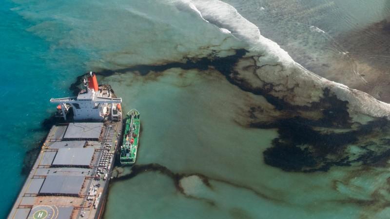 Cá heo chết hàng loạt sau vụ tràn dầu ở quốc đảo Ấn Độ Dương - ảnh 2