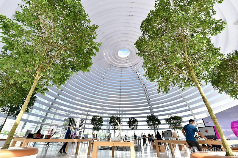Apple sắp mở cửa hàng nổi trên mặt nước độc đáo đầu tiên - ảnh 4