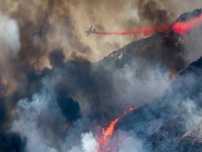Cháy rừng kinh hoàng do tiệc 'tiết lộ giới tính thai nhi' - ảnh 2
