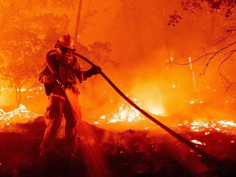 Cháy rừng kinh hoàng do tiệc 'tiết lộ giới tính thai nhi' - ảnh 1