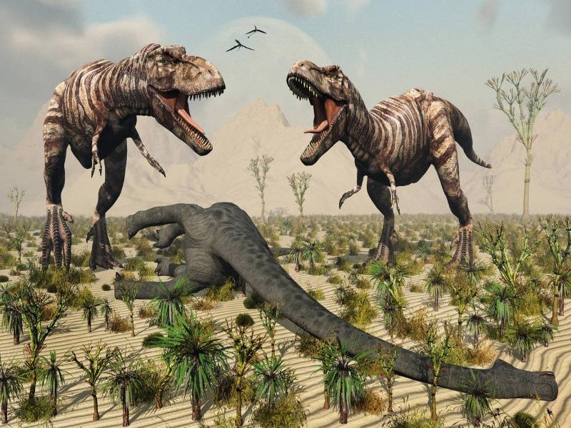 Sắp đấu giá hóa thạch T-Rex hoàn chỉnh nhất thế giới  - ảnh 2