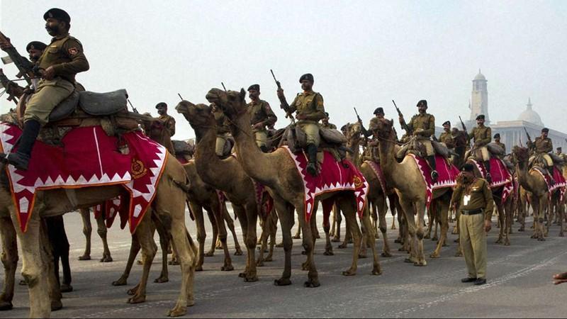 Ấn Độ dùng lạc đà hai bướu tuần tra biên giới với Trung Quốc - ảnh 2