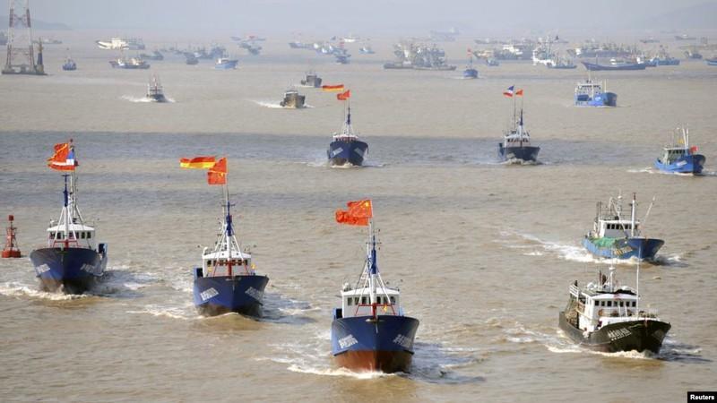 Biển Đông: Báo động nguồn cá và san hô vì hoạt động Trung Quốc - ảnh 2