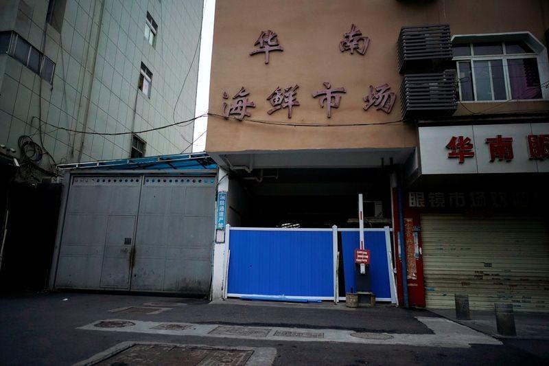 WHO sẽ cử người đến Trung Quốc điều tra nguồn gốc COVID-19 - ảnh 2