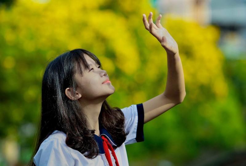 Bộ ảnh: Huỳnh liên nở rợp trên đường phố Sài Gòn - ảnh 5