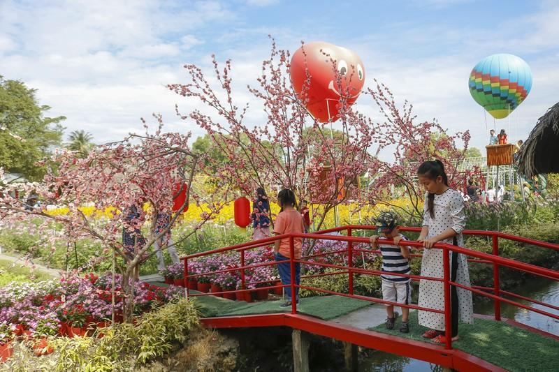 Đẹp ngỡ ngàng Cánh đồng hoa bên sông Sài Gòn - ảnh 11