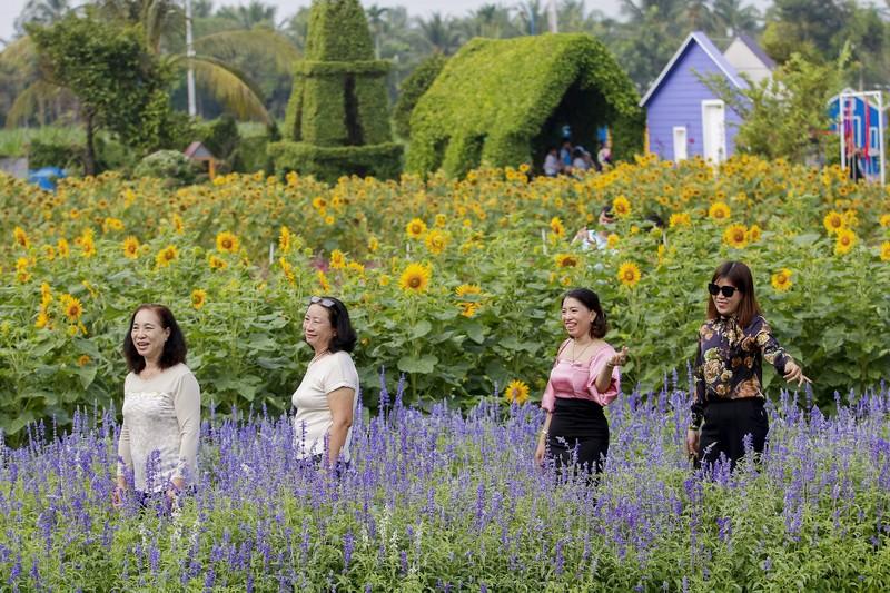 Đẹp ngỡ ngàng Cánh đồng hoa bên sông Sài Gòn - ảnh 8
