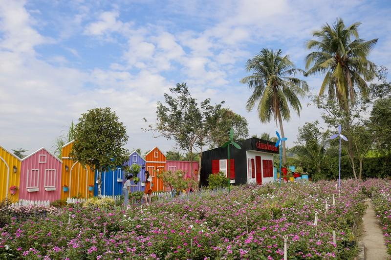 Đẹp ngỡ ngàng Cánh đồng hoa bên sông Sài Gòn - ảnh 2