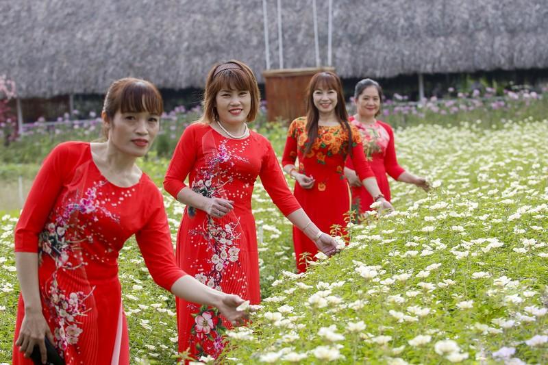 Đẹp ngỡ ngàng Cánh đồng hoa bên sông Sài Gòn - ảnh 5
