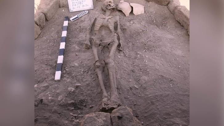 Phát hiện thành phố cổ đại lớn nhất Ai Cập - ảnh 2
