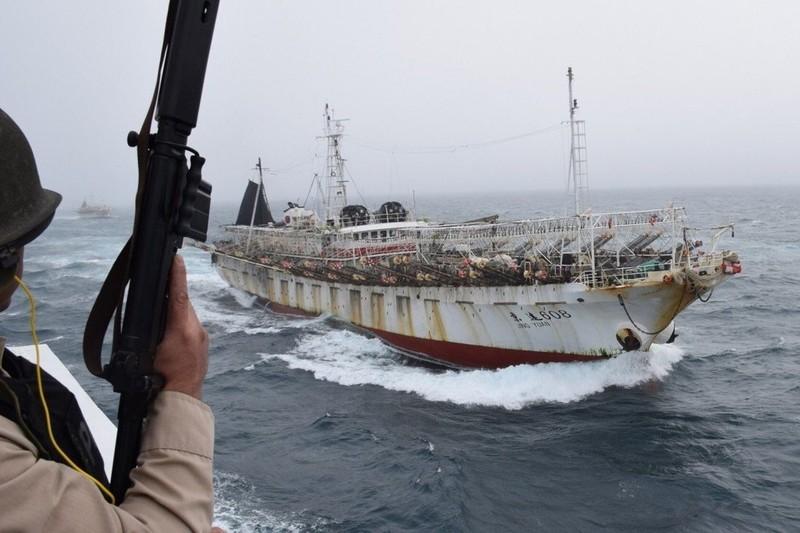 Hàng trăm tàu cá Trung Quốc bị nghi đánh bắt trái phép gần Argentina - ảnh 1