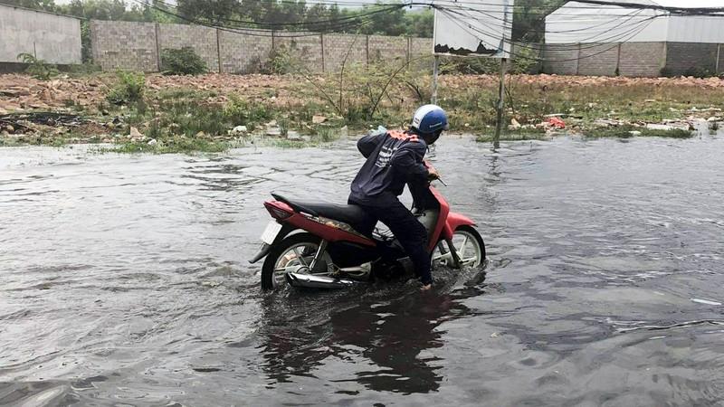 Phú Quốc đón cơn mưa 'vàng' giải nhiệt - ảnh 2
