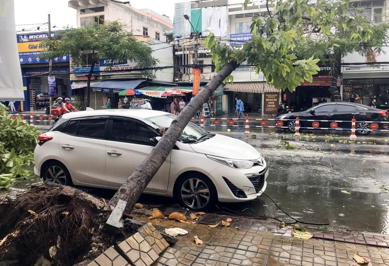 Cần Thơ: Giông lốc làm cây xanh ngã đổ, 9 ô tô hư hỏng nặng - ảnh 2