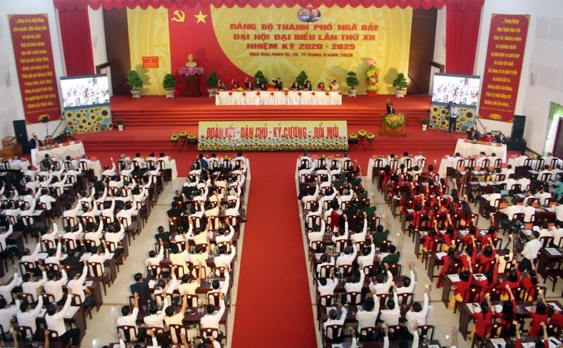 Ông Nguyễn Huỳnh Đức tái đắc cử Bí thư Thành ủy TP Ngã Bảy - ảnh 1