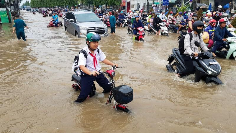 Sở GTVT Cần Thơ đề nghị chi 20 tỉ khắc phục đường hư do ngập - ảnh 1