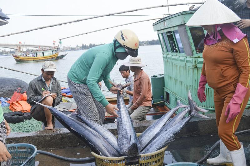 Diễn biến mới nhất về 'thẻ vàng' với thủy sản Việt Nam - ảnh 1