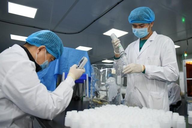Việt Nam thử nghiệm thuốc điều trị chủng mới của virus Corona - ảnh 1