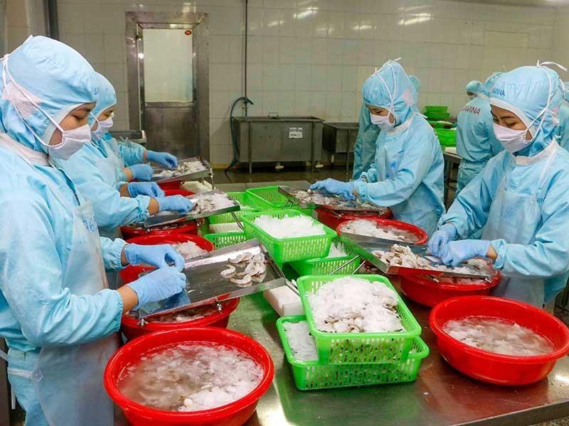 Đến tháng 6, xuất khẩu thủy sản sang TQ có thể hồi phục 100% - ảnh 1