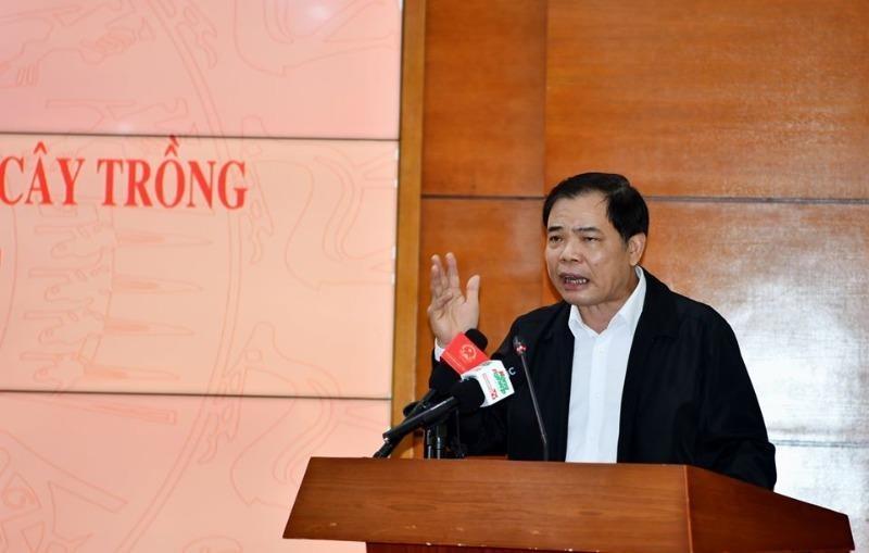 Bộ trưởng Nguyễn Xuân Cường lý giải giá heo vẫn cao - ảnh 1
