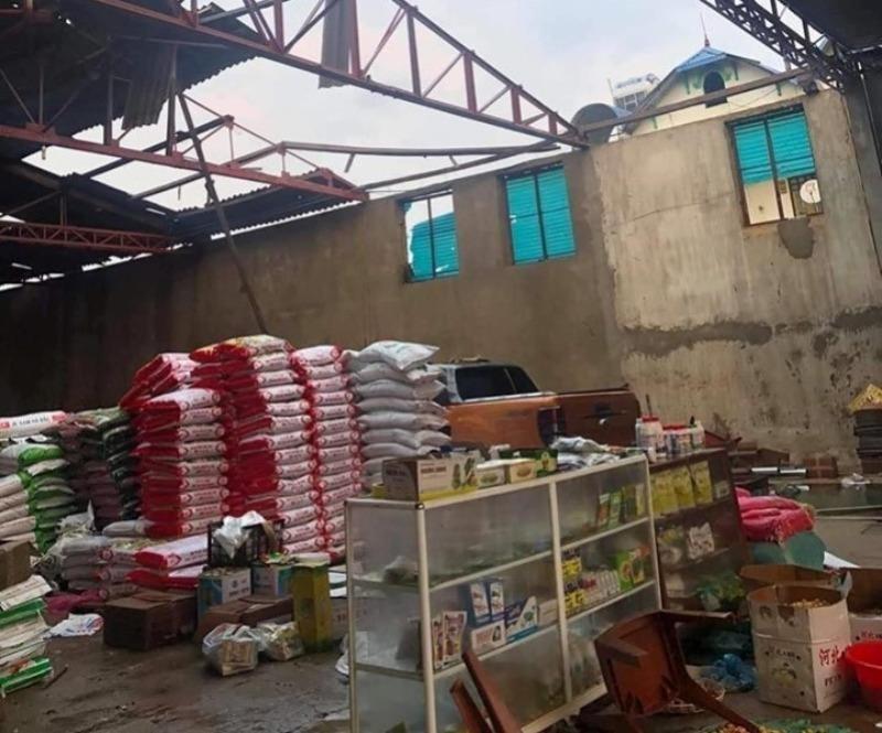 Hàng trăm hecta mận, xoài, nhãn ở Sơn La tan hoang do mưa đá - ảnh 1