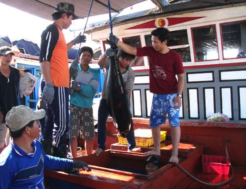 Vươn khơi xa, nghề cá gặp khó vì thiếu lao động - ảnh 1