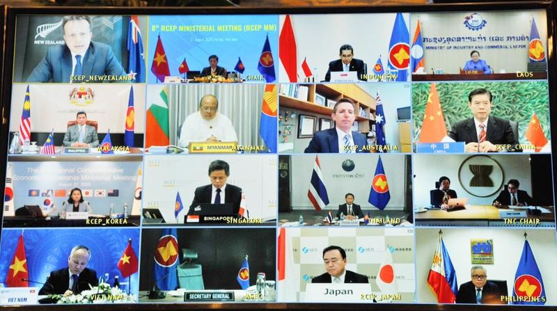 Khai mạc Hội nghị Bộ trưởng Kinh tế RCEP lần thứ 8 - ảnh 2