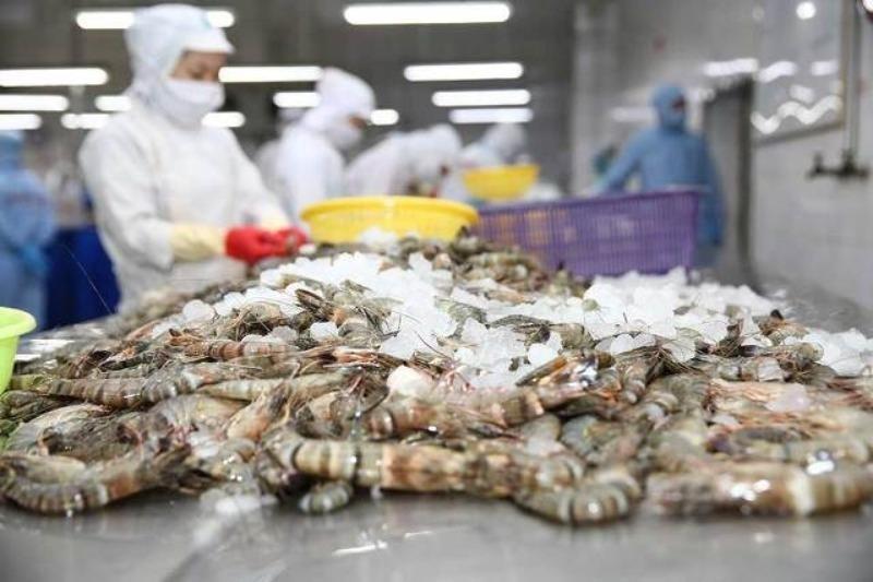 Tôm, cá Việt thắng lớn ở EU nhờ lợi thế trước đối thủ   - ảnh 1