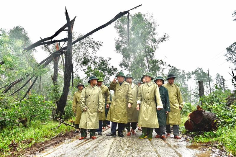 Phó Thủ tướng đến hiện trường thủy điện Rào Trăng 3 - ảnh 1