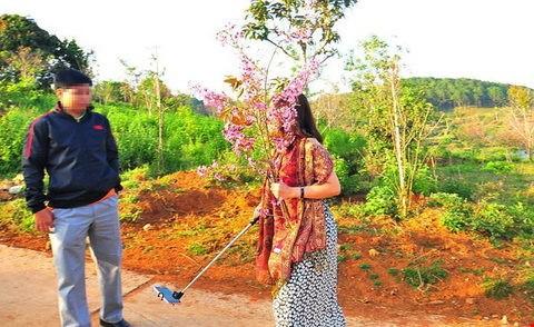 Bình Thuận yêu cầu phó giám đốc sở bẻ hoa phải xin lỗi - ảnh 1