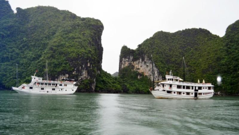 Bão số 4: Quảng Ninh cấm tàu nghỉ đêm xuất bến - ảnh 1