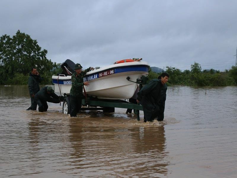 Đắk Lắk, Lâm Đồng: Hoa màu chìm trong biển nước - ảnh 3