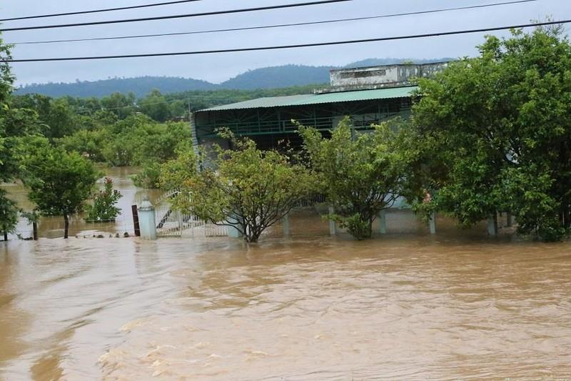 Sau Đắk Kar, Thủy điện Đắk Sin 1 gặp sự cố, đang bị cô lập - ảnh 2