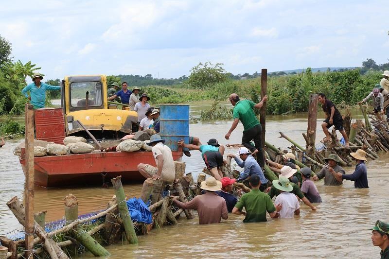 Chùm ảnh hàng trăm người vá đê ở Đắk Lắk - ảnh 5