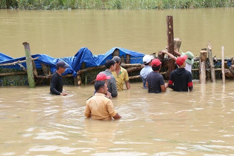 Đã cứu được đê vỡ ở Đắk Lắk - ảnh 1