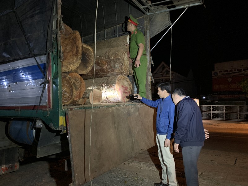 Bắt hơn 21 m3 gỗ mang 'lý lịch' giả - ảnh 1