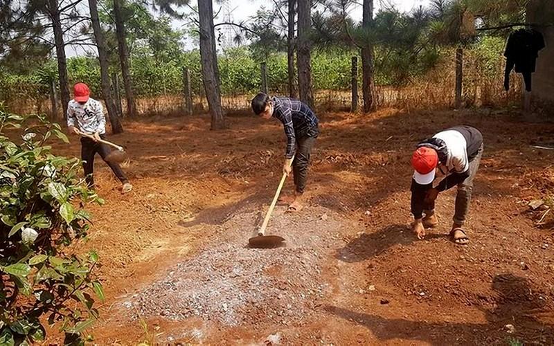 Nhóm thiếu niên đua xe bị phạt cuốc đất trồng cây  - ảnh 1
