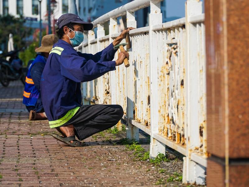 Phố phường Đà Nẵng rực rỡ trước Tết Tân Sửu - ảnh 3