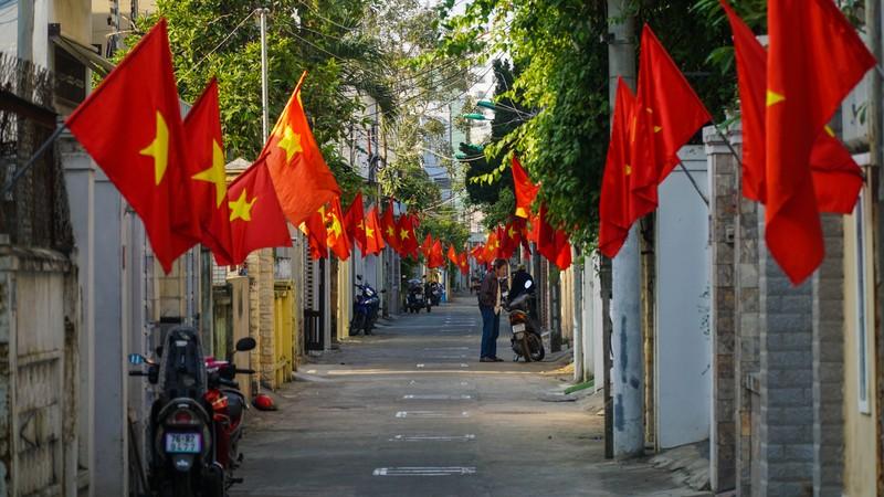 Phố phường Đà Nẵng rực rỡ trước Tết Tân Sửu - ảnh 9