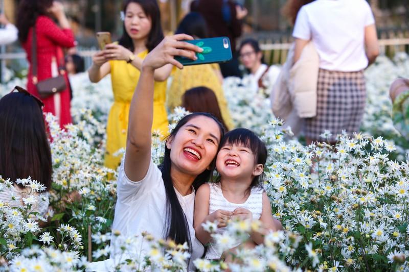 Vườn cúc họa mi 10.000 cây hút hồn giới trẻ Đà Nẵng - ảnh 6