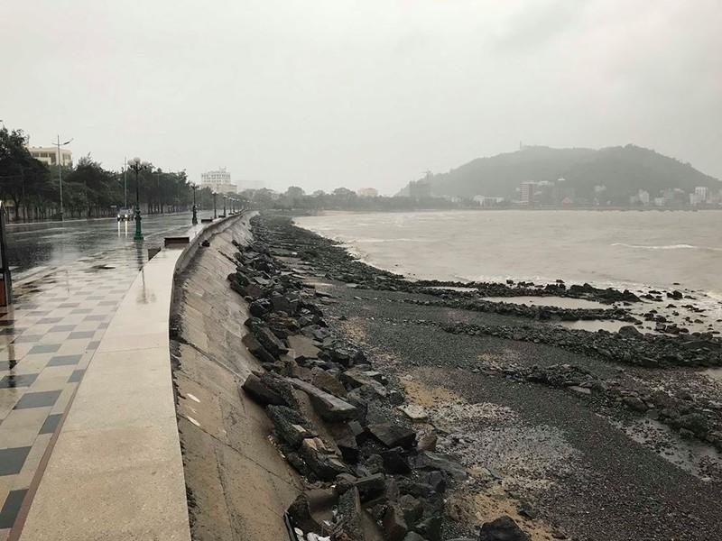 Sáng 25-11: Bão số 9 áp sát Vũng Tàu, gió mưa đang mạnh lên - ảnh 2