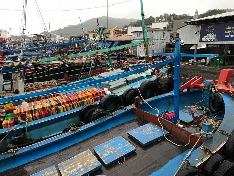 Sáng 25-11: Bão số 9 áp sát Vũng Tàu, gió mưa đang mạnh lên - ảnh 6