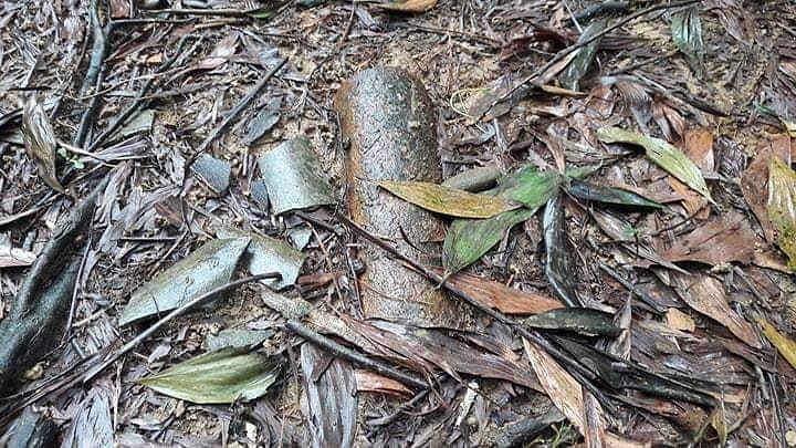 Huế: Phát hiện nhiều bom mìn trong vườn dân - ảnh 2