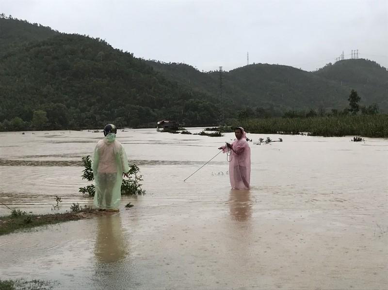 Đà Nẵng: Nước lũ bủa vây Hoà Vang - ảnh 5