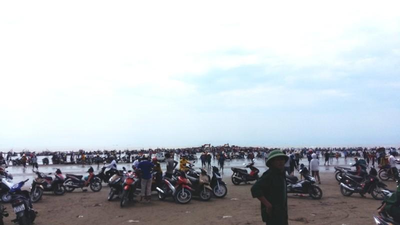 Hàng ngàn người dân hợp sức đưa cá voi về với biển - ảnh 4