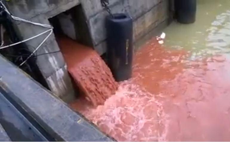 Chưa thể khẳng định video xả nước màu đỏ là ở Formosa  - ảnh 1
